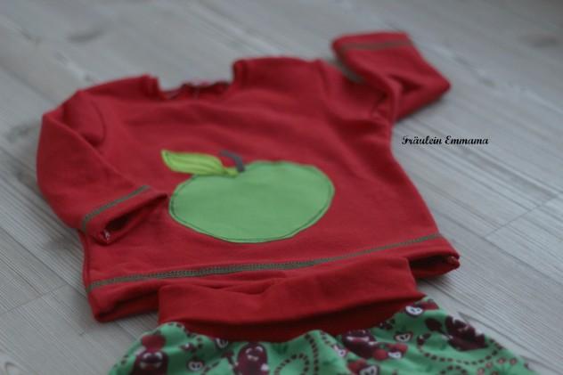 Apfelernte IMG_3592